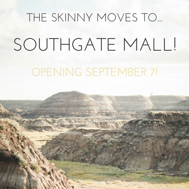 The Skinny Moves to Southgate: The Design Plan